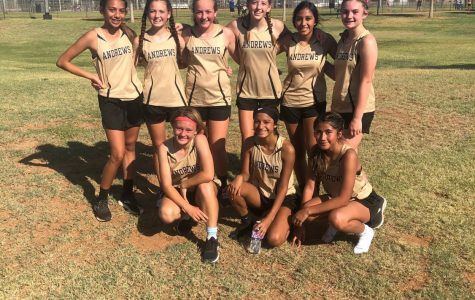 AMS Cross Country Starts Strong