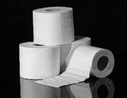 The Great Toilet Paper Crisis
