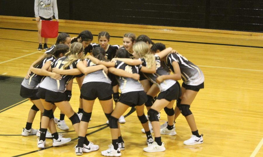 Andrews Mustang Volleyball: Making the Team